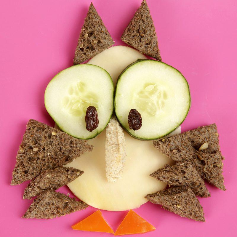 FunBites - Lifestyle - Creative - Owl
