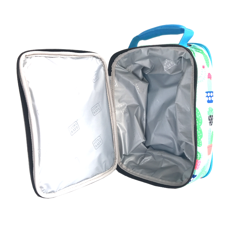 Arctic Zone Lunch Pack Expandable - Cactus - Open