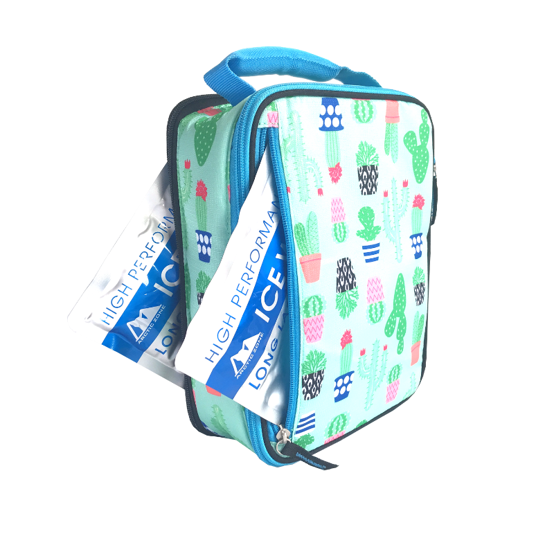 Arctic Zone Lunch Pack Expandable - Cactus